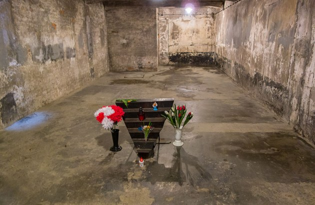 Krakow-Auschwitz-14