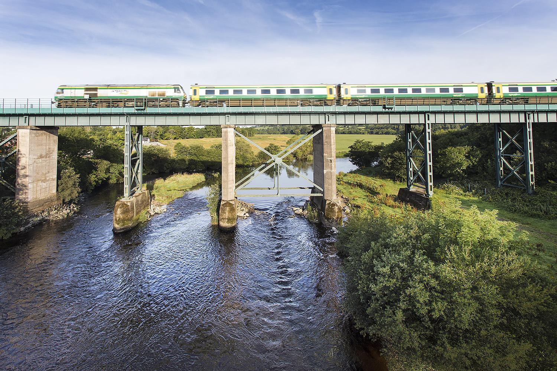 Blackwater Mallow Rail